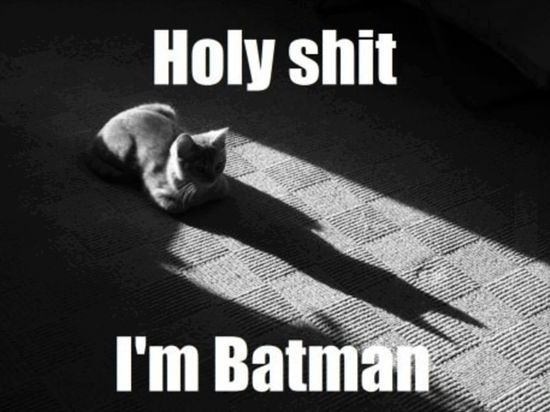 Batman-Or-Catwoman